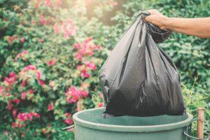 Как Южная Корея перерабатывает 95% своих пищевых отходов