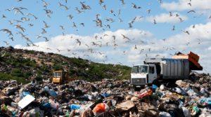 Россия: власти ставят на сжигание мусора вместо переработки (Eurasianet, США)