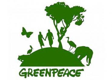 «Гринпис» просит чиновников отказаться от биоразлагаемых и бумажных товаров и упаковки